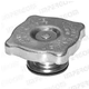 Water radiator cap